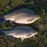 20150427_Fishing_Prylbychi_046.jpg