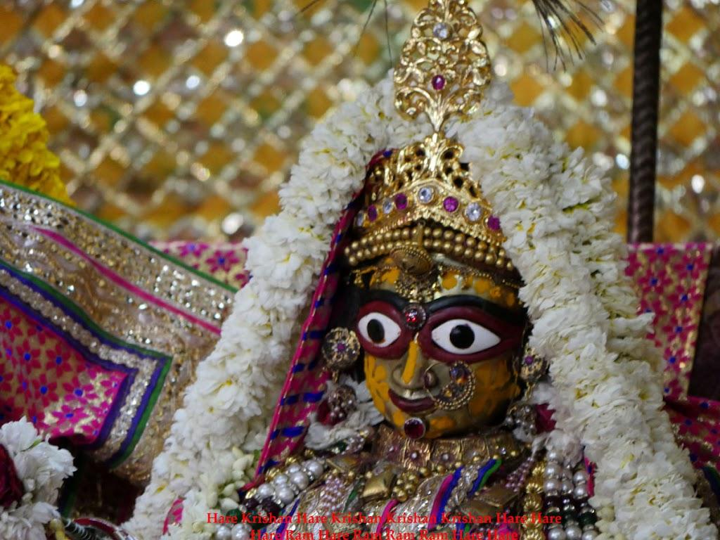 Radha Govind Devji Deity Darshan 30 Mar 2016  (15)