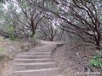 Manhattan Canyon Trail