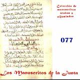 077 - Carpeta de manuscritos sueltos.