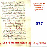 077 - Carpeta de manuscritos sueltos.
