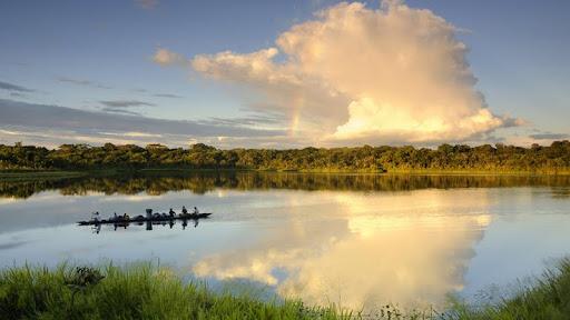 Yasuni National Park, Ecuador.jpg