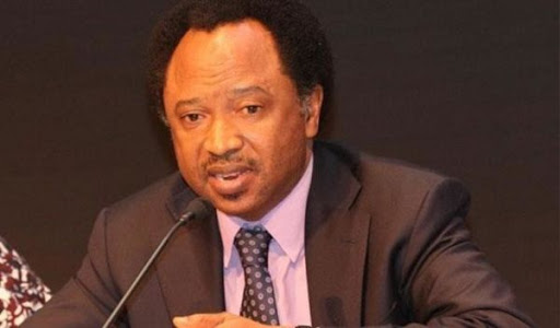 We Would Be Doomed If Tinubu Fails To Reconcile APC - Shehu Sani Speaks Out