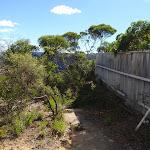Fence along Olympian Track (95569)