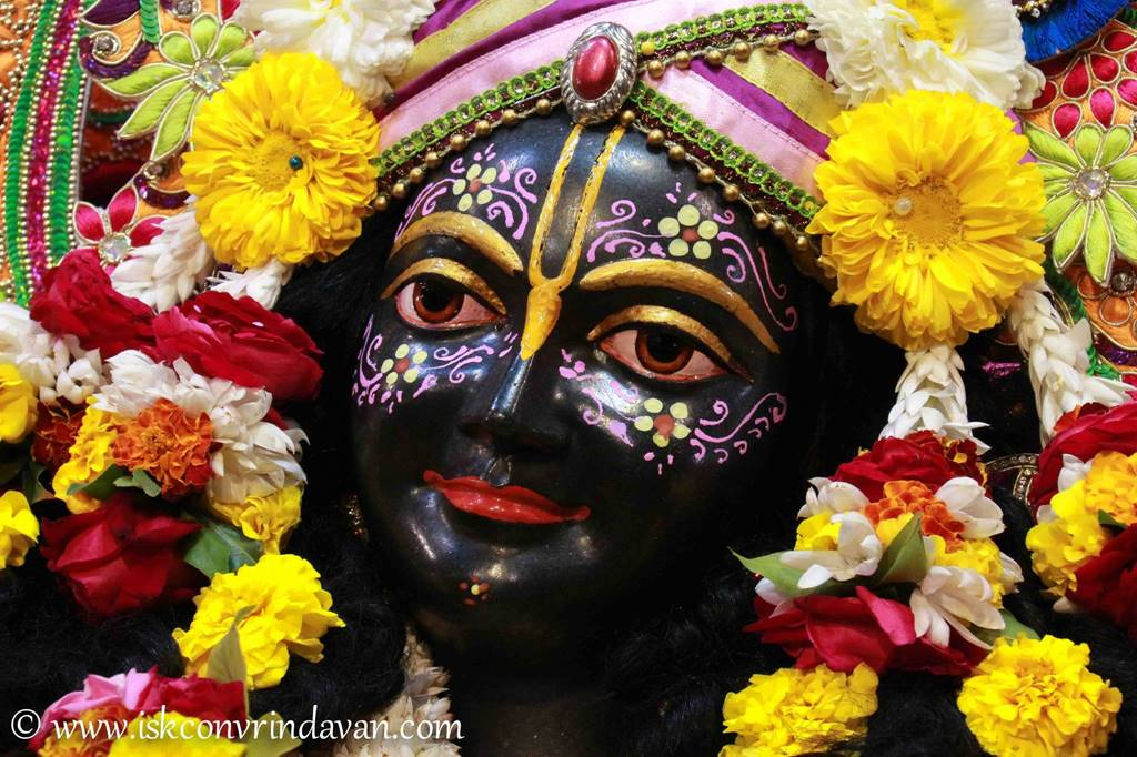 ISKCON Vrindavan Sringar Deity Darshan 14 Jan 2016 (14)