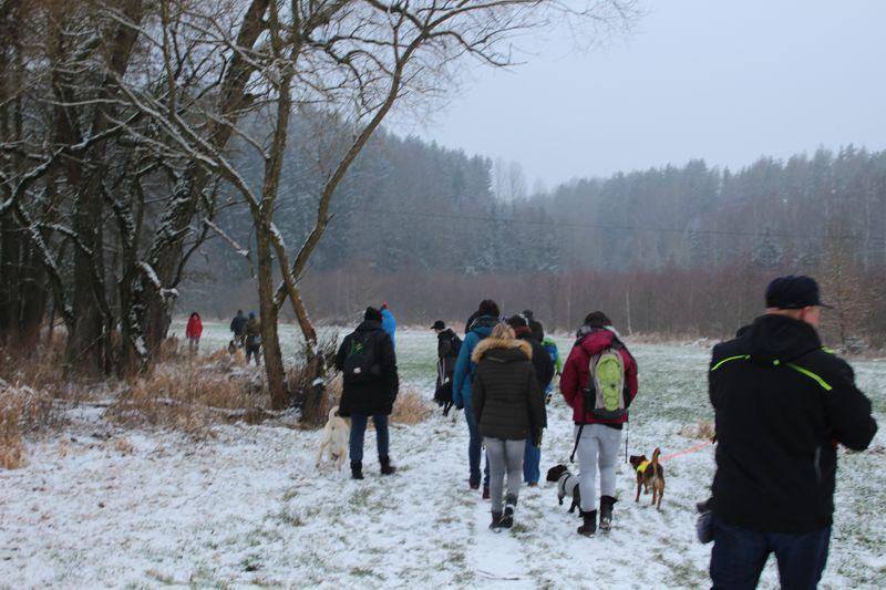01. Januar 2016: Neujahrswanderung ins Waldnaabtal - IMG_1487.JPG