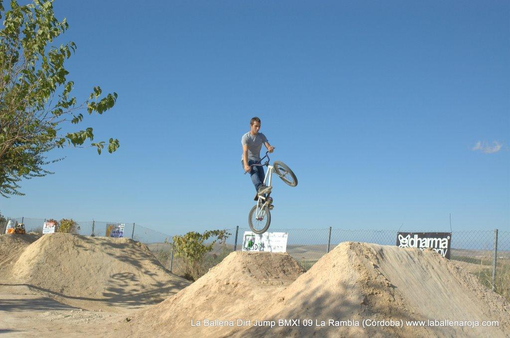 Ballena Dirt Jump BMX 2009 - BMX_09_0052.jpg