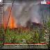 [VÍDEO] Acidente aéreo mata presidente e quatro jogadores do Palmas antes de jogo da Copa Verde