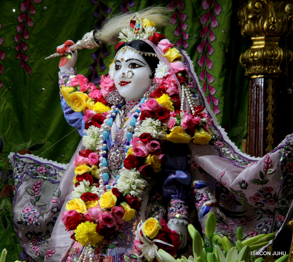 ISKCON Juhu Deity Darshan on 20th Oct 2016 (16)