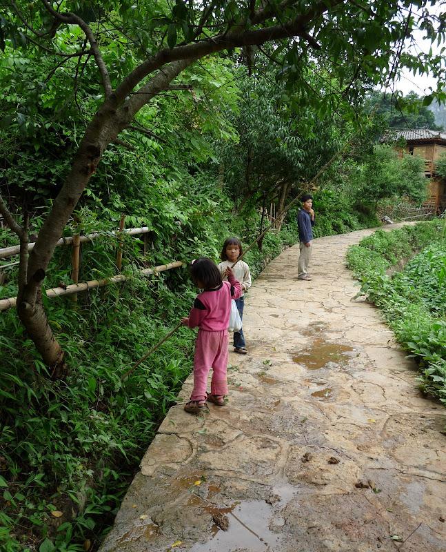 Chine . Yunnan BA MEI 2 - P1260919.JPG