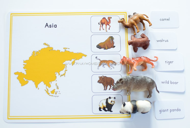 Montessori Animal Continents Activity Sheets