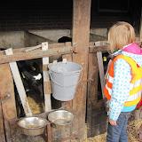 Welpen - Naar de boerderij - IMG_5518.JPG