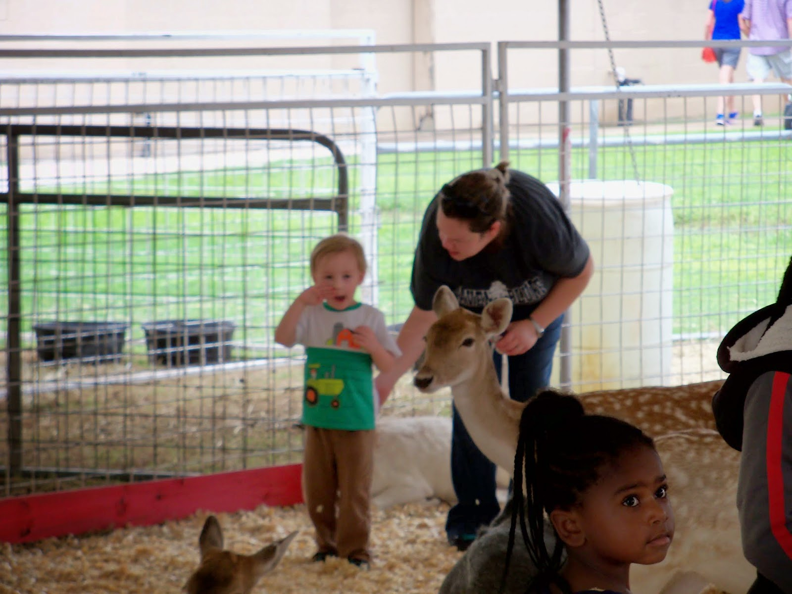 Fort Bend County Fair 2014 - 116_4289.JPG