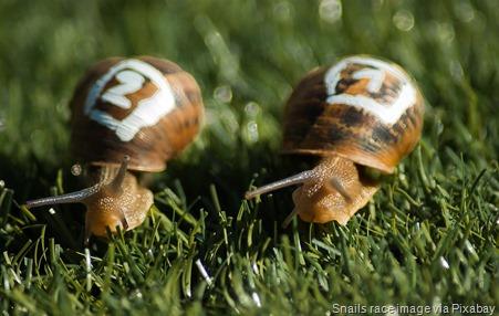 snails-competitors-race