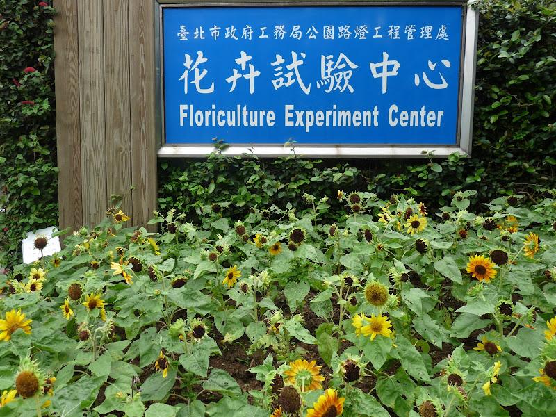TAIWAN.Taipei Yangminshan, une des résidences de CKS - P1110953.JPG