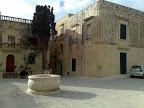 Visita turística a Medina