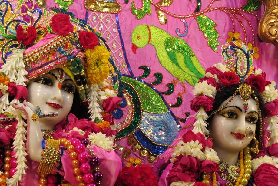 ISKCON Vallabh vidhyanagar Deity Darshan 19 jan 2017 (18)