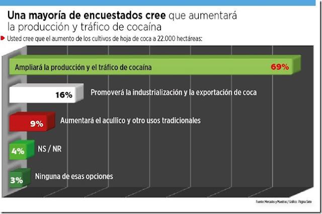 Encuesta: 69% cree que aumentará la producción de droga en Bolivia