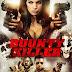 Sát Thủ Tiền Thưởng - Bounty Killer (2013) [HD+Vietsub]