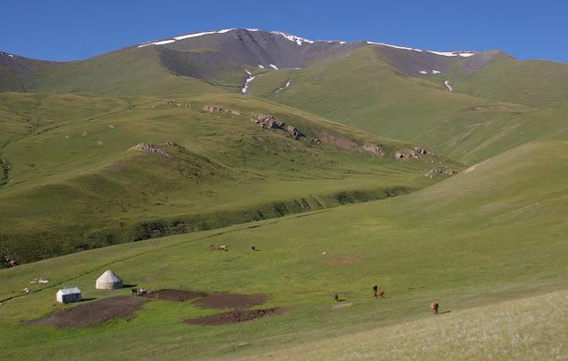 Dolon Pass ; vue vers l'Ouest. Au sommet : biotope de Parnassius delphius noir (17 juillet 2006). Photo : J.-M. Gayman