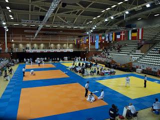 07-06-2015 EK Jiu Jitsu Almere
