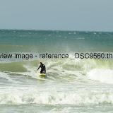 _DSC9560.thumb.jpg