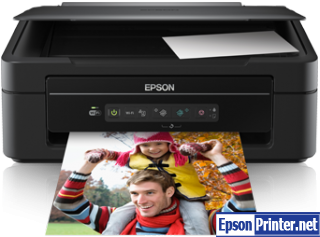 How to reset Epson XP-202 printer