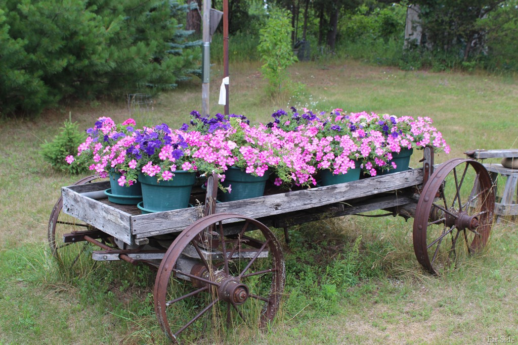 [wagon+full+of+flowers%5B8%5D]