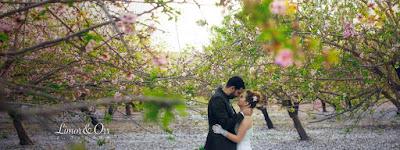 https://sites.google.com/site/yanivshemen/Wedding-books/Weddings/full-album/avi-galina/limor-or