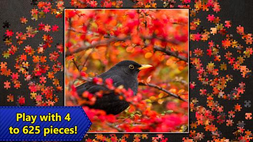 Jigsaw Puzzles Epic 1.3.8 screenshots 10
