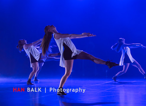 Han Balk Voorster Dansdag 2016-4538-2.jpg