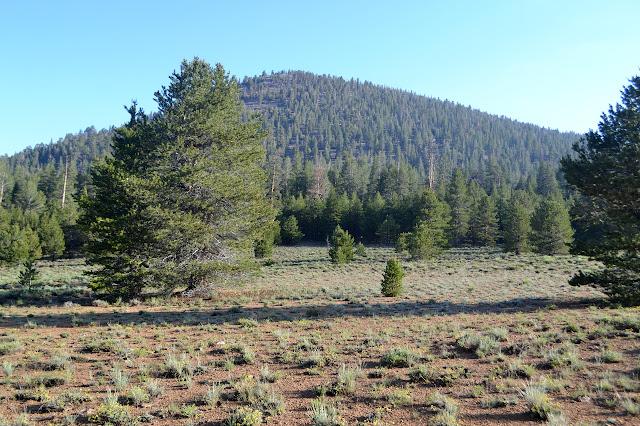 Templeton Mountain