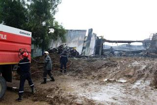 Tizi-Ouzou : plus d'une centaine de bovins sauvés d'un incendie à Fréha