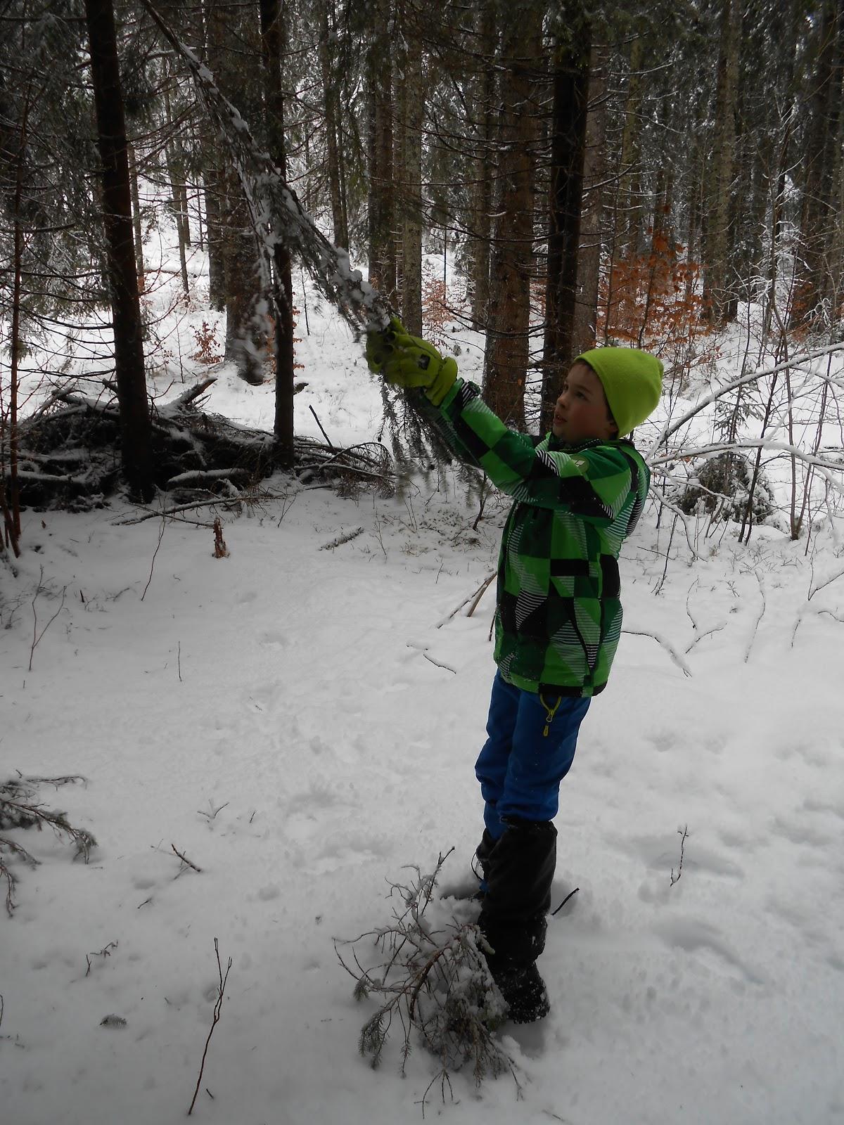 MČ zimovanje, Črni dol, 12.-13. februar 2016 - DSCN4990.JPG