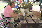 Lesson in traditional medicine and plant uses, Paseo del Lobo July 13-15 (Photo by D. Sayre)