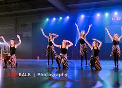 Han Balk Voorster Dansdag 2016-3836-2.jpg