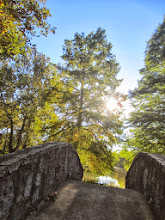 Photo: Looking over a stone bridge at sunlight through trees at Eastwood Park in Dayton, Ohio.