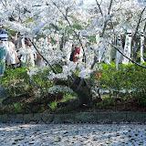 2014 Japan - Dag 7 - danique-DSCN5881.jpg