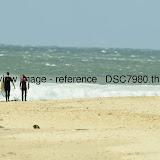 _DSC7980.thumb.jpg