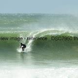 _DSC7950.thumb.jpg