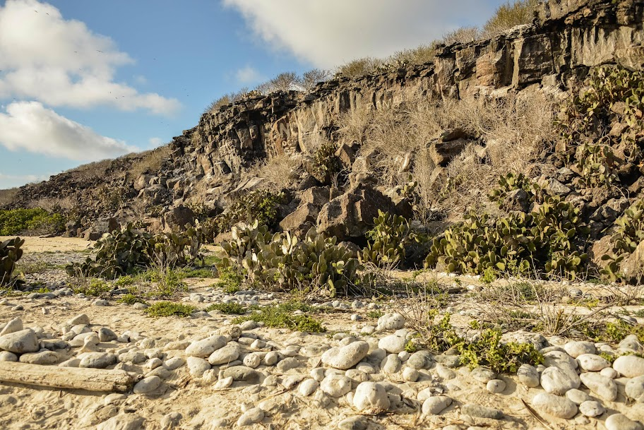 galapagos - Galapagos_FB_2-77.jpg