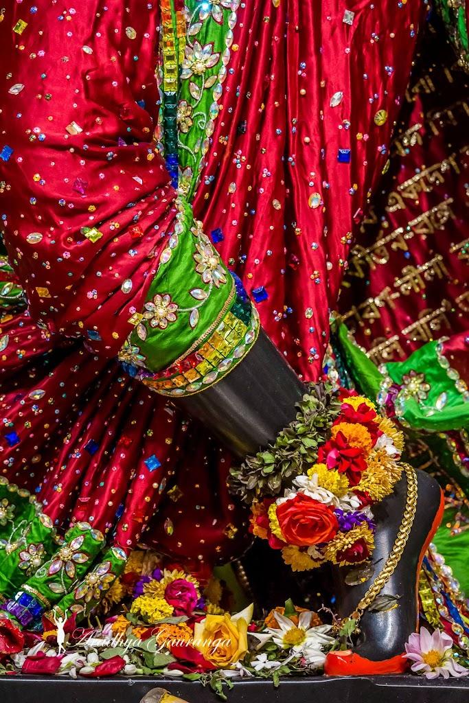 ISKCON Mayapur Deity Darshan 14 Jan 2017 (11)