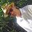 Jody Saurette's profile photo