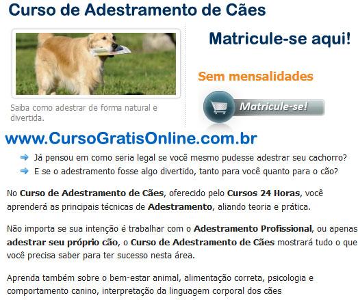 Curso de Adestramento de Cães Online