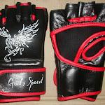 MMA Gloves 1.jpg