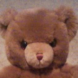 Teddy Power Photo 10