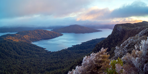 Lake Waikaremoana: Sunrise at Panekire