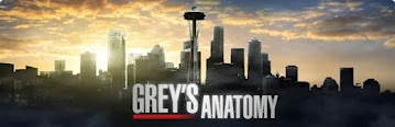 greys anatomy banner good Download Greys Anatomy 10ª Temporada AVI + RMVB Legendado
