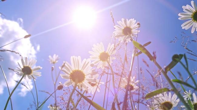 Thần gió và mặt trời