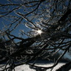 tn_lachaux-2010-12-35.jpg